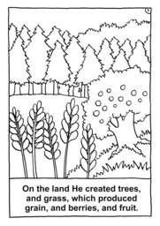 08_Colouring_Creation: Art and craft; Bible story; BW; Coloring; Colouring