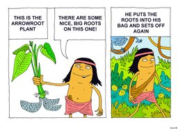 05_Arrowroot_Story: Bible topics; Colour; Story