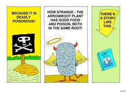 09_Arrowroot_Story: Bible topics; Colour; Story
