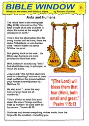 023_Bible_Window: Bible topics; Colour