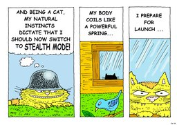18_Cat_Story: Bible story
