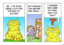 51_Cat_Story: Bible story