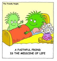 02_Frond_Friends
