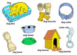 38_Nouns: Colour; Nouns